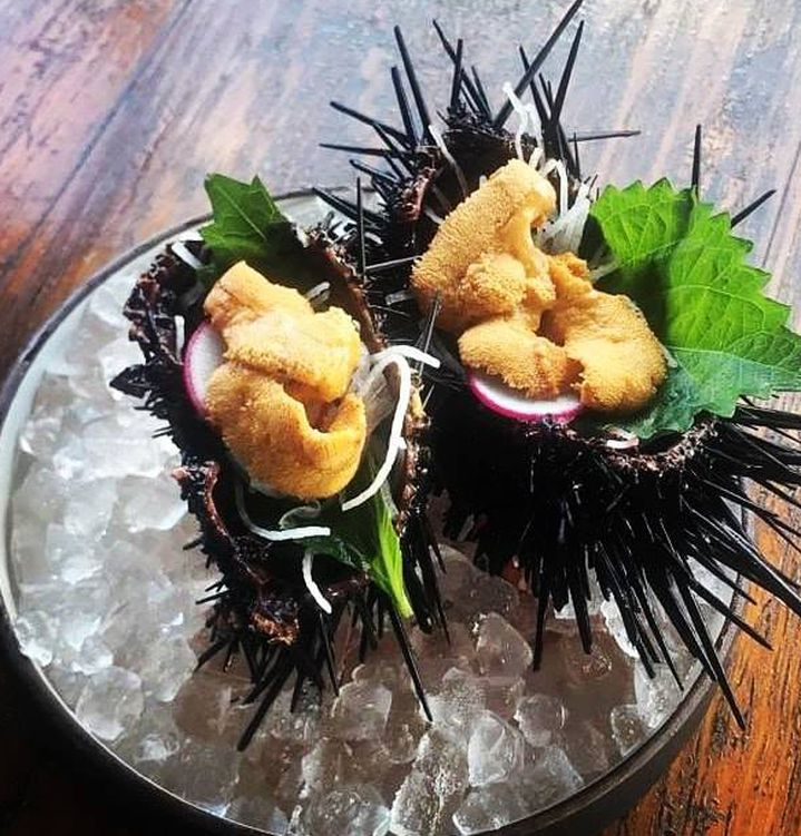 uni served in its shell on a bed of ice and topped with sliced radishes and greens