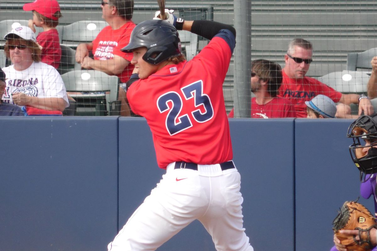 Zach Gibbons earns my nod for Arizona's player of the year in 2014