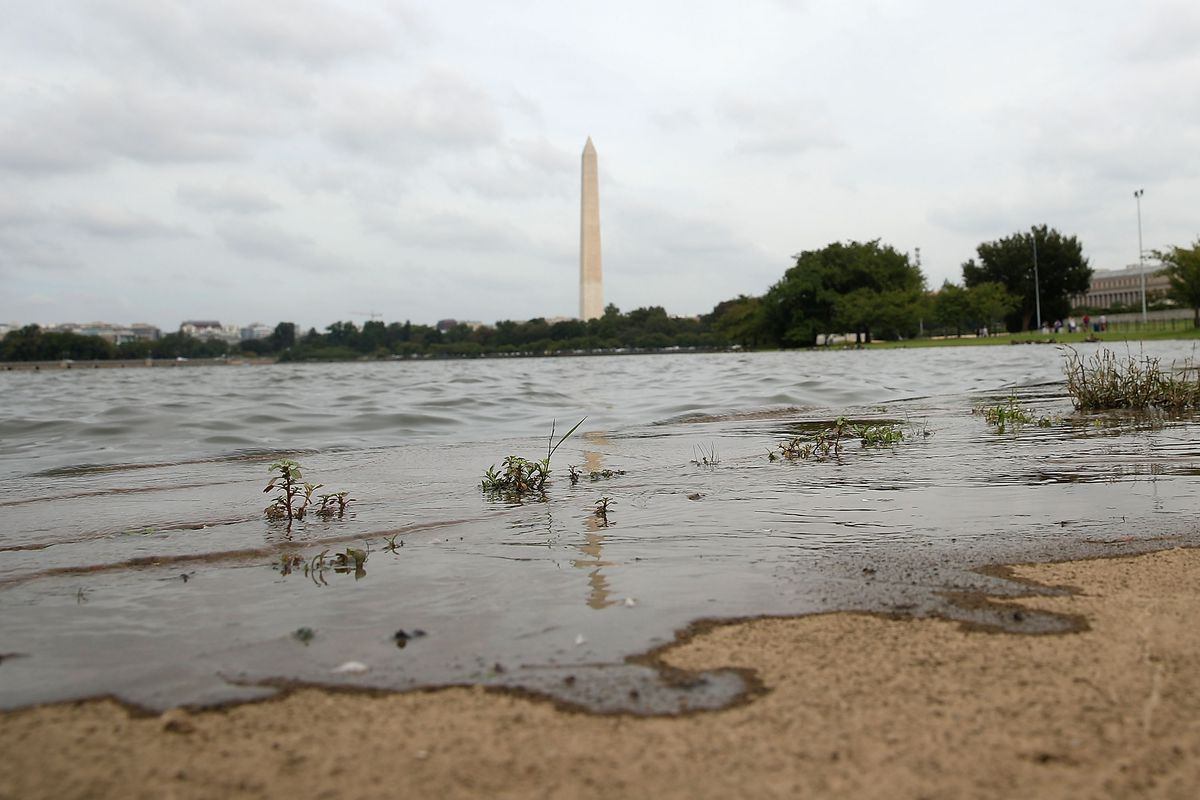 Nuisance flooding is already an issue in Washington, DC as sea levels continue to rise in part due to climate change. President Trump will give his State of the Union address tonight, but likely won't mention climate at all.