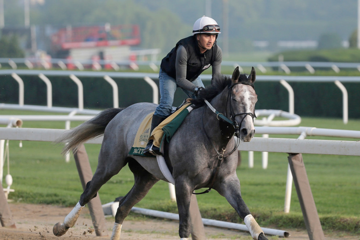 Tacitus, who will be racing for the first time since being placed third in the Derby, is the 9-5 favorite.