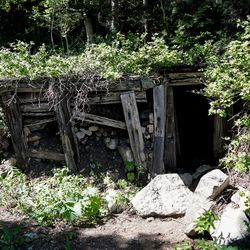 An abandoned mine shaft, caved in just past the entrance, is seen in Mill D South Fork of Big Cottonwood Canyon on Wednesday, Aug. 12, 2020.