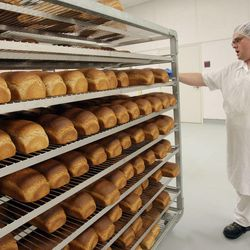 Paul Farnsworth checks the cooling temperature of the freshly baked bread at the LDS Church's  Welfare Square in Salt Lake City  Thursday, April 7, 2011.