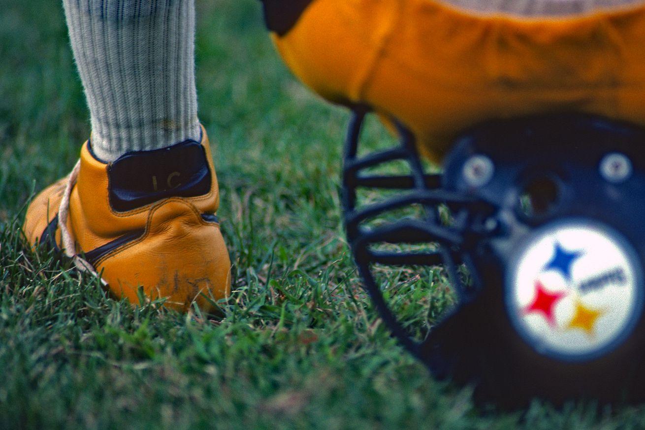 Pittsburgh Steelers L.C. Greenwood