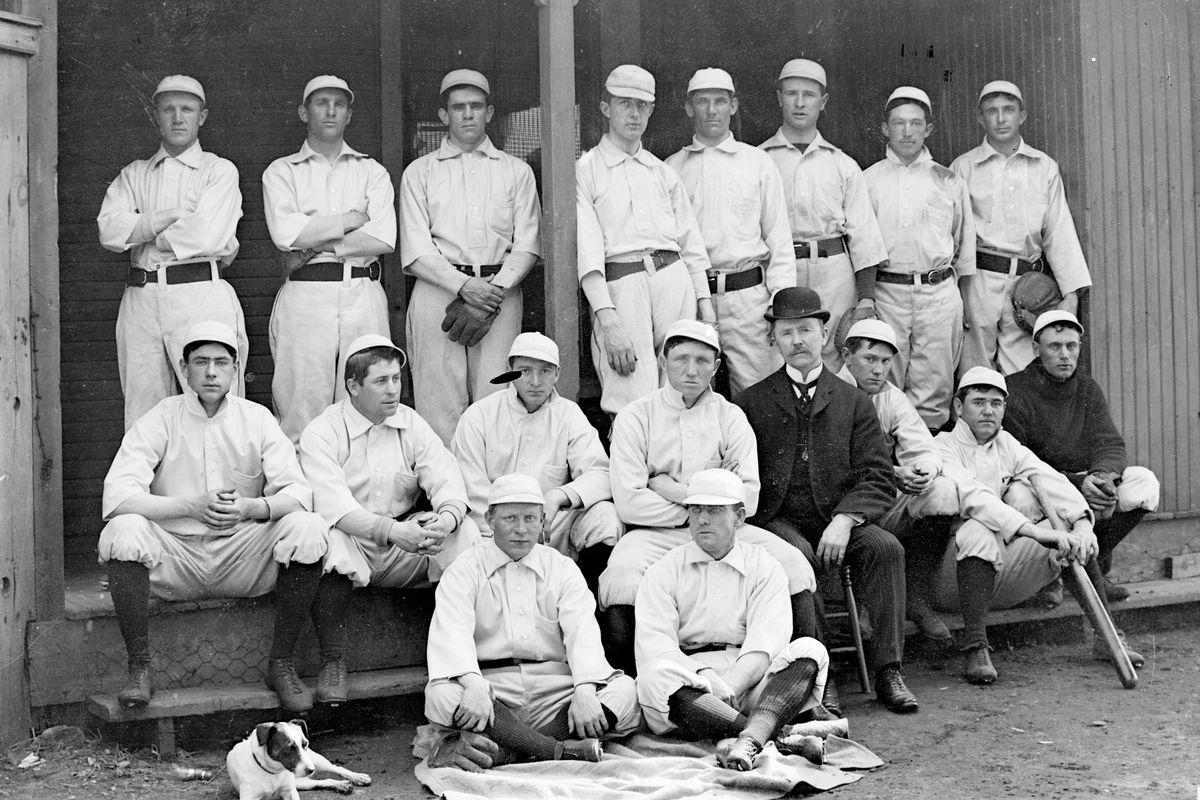 Chicago White Sox Portrait