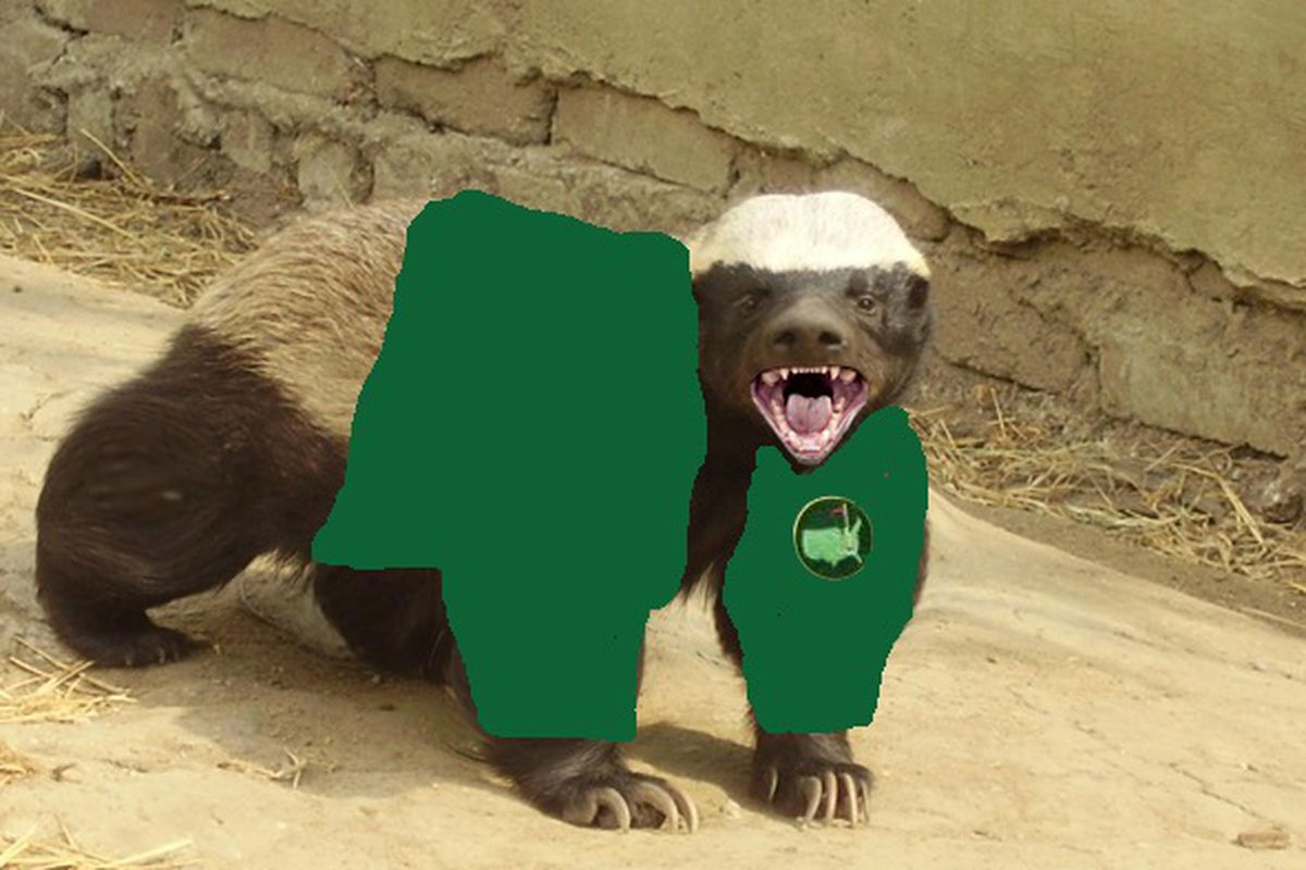 """Official CRFF OSU Masters coverage mascot: """"<strong>Augusto, the Rabid Masters Honey Badger</strong>"""".  Augusto says: 'HSSSsssss, SNnarrrlll, HSSSSSsssssss!' (Thanks to OSUtopia for the photo)"""