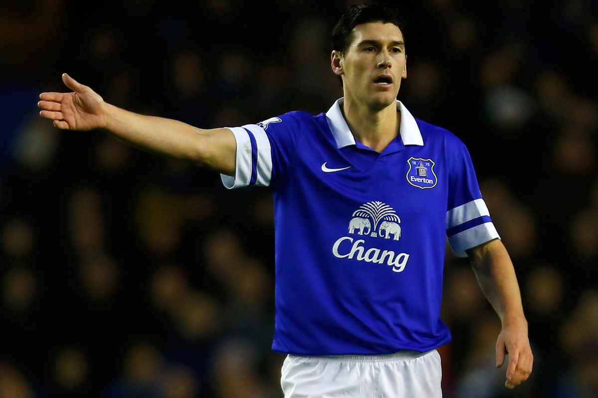Gareth Barry could prove to be Everton's best signing this season, and the next also.
