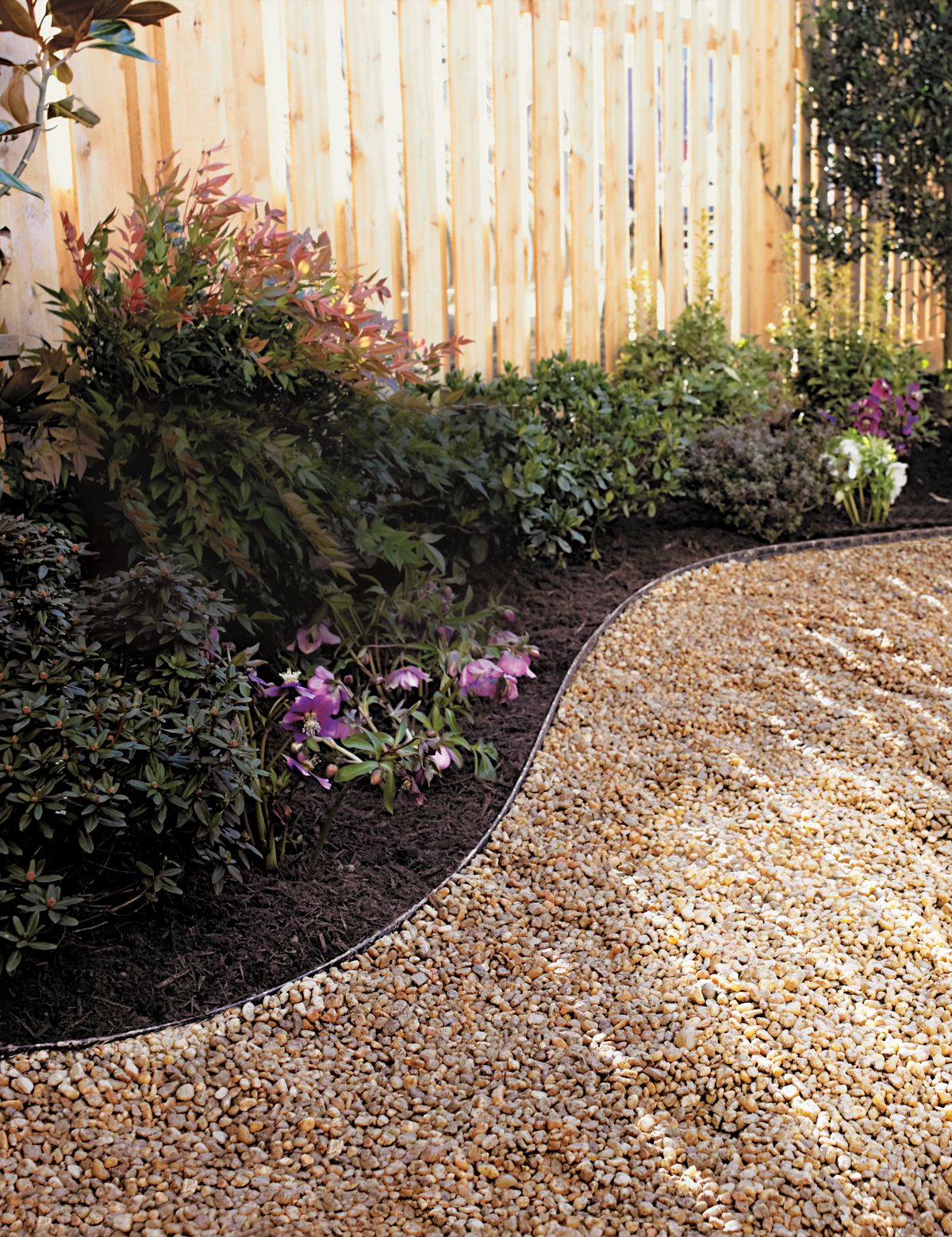 Curved gavel pathway next to plants and a fence.