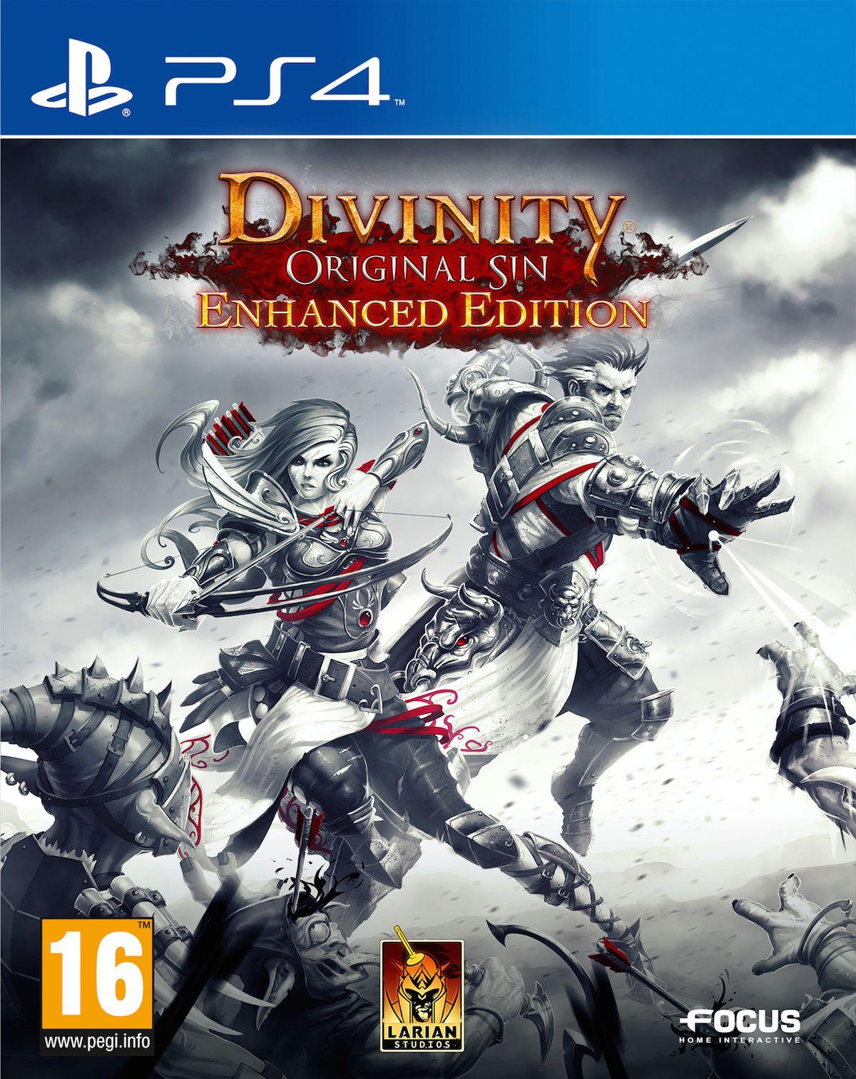Divinity: Original Sin console boxes