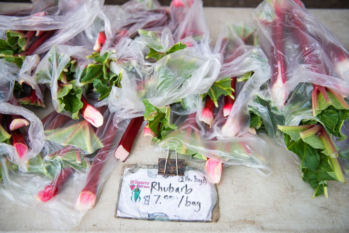 """Stalks of pink rhubarb sit in individual plastic bags, next to a handwritten sign that reads """"Rhubarb $7/bag."""""""