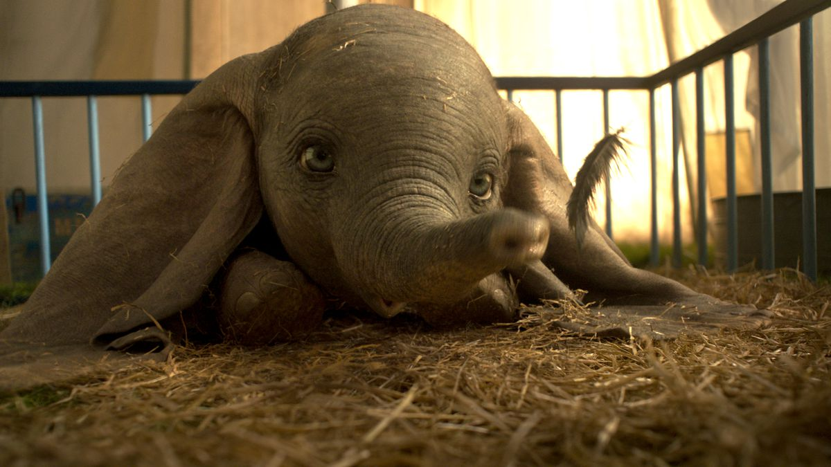 Image result for Dumbo movie