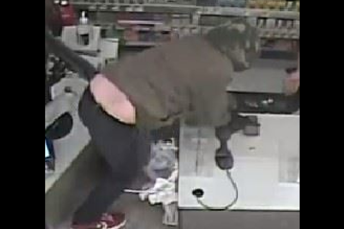 Police say this man robbed a Walgreens Jan. 15, 2021 in Wheaton.