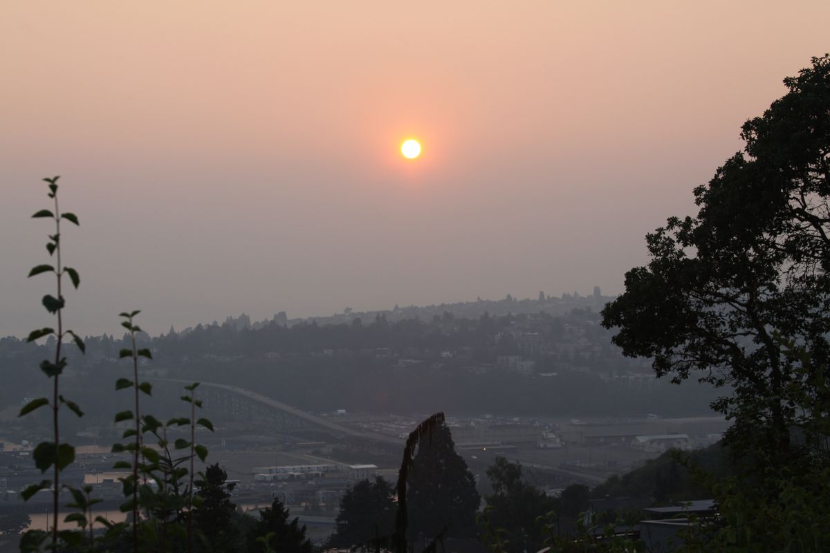 The sun peeks through the haze over a wooded area in Seattle as smoke from local wildfires enter the region.