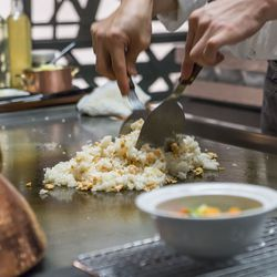Salmon & Iceburg Fried Rice