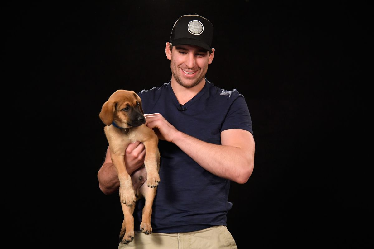 2018 NHL All-Star - Players & Puppies
