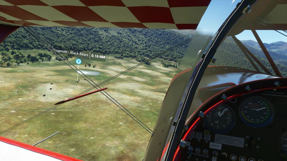 Black Bears in side Yosemite National Park in Microsoft Flight Simulator