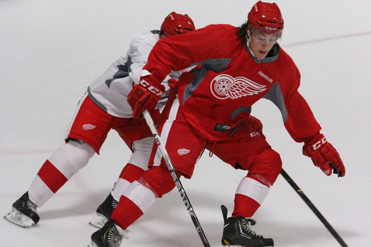 Tyler Bertuzzi protects the puck during the Prospects Scrimmage