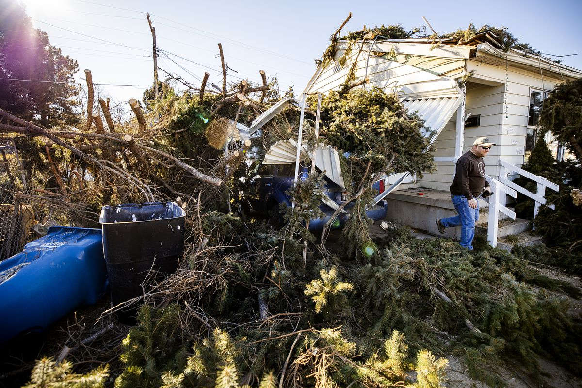 Sean Drake helps brother-in-law Lyle Bair after high winds blew over two large pine trees in the yard of Bair's home in Washington Terrace on Tuesday, Jan. 19, 2021. One of the trees landed on Bair's home, damaging his carport, his car and other items.