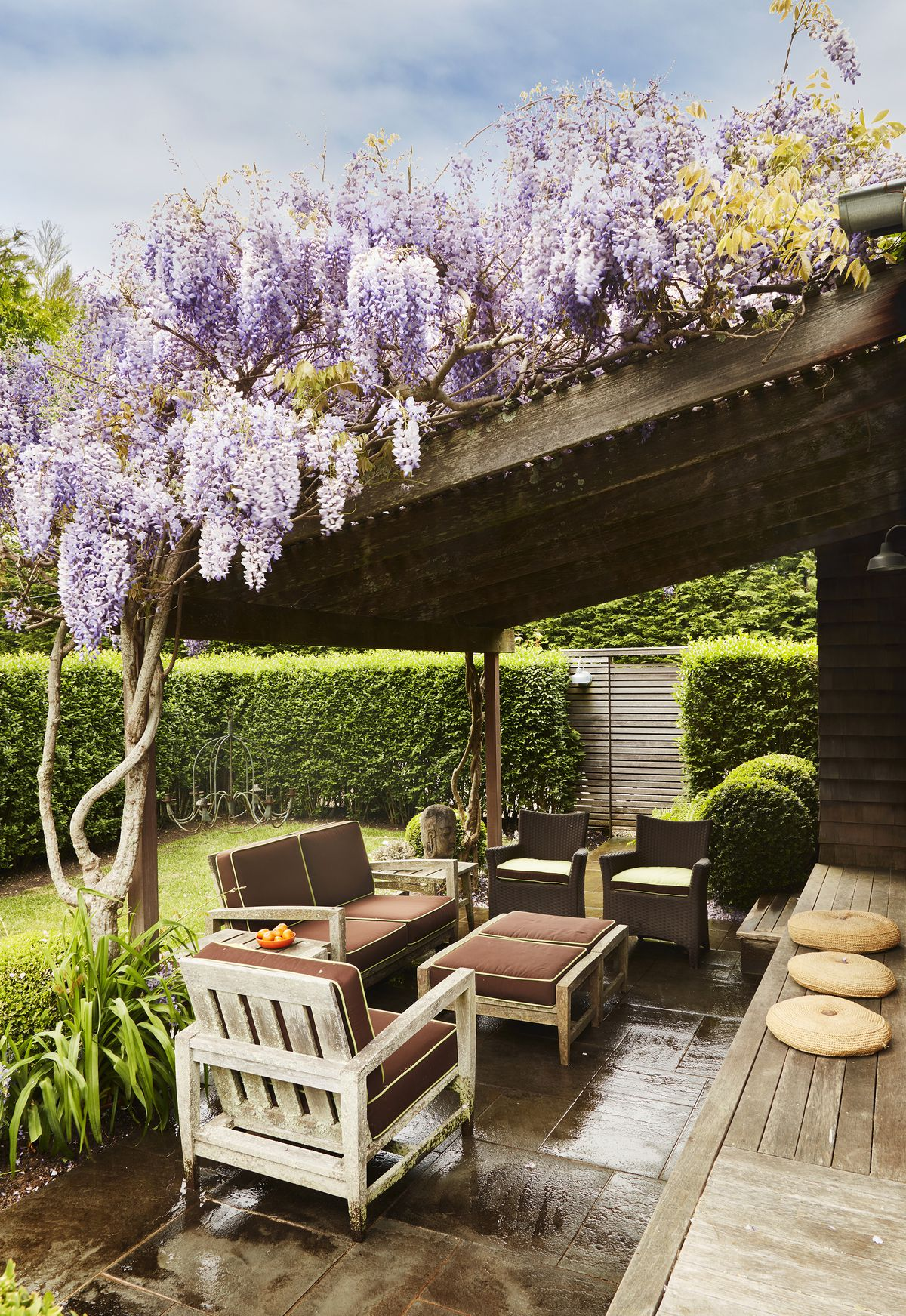 Brilliant purple wisteria tops an overhang that covers the patio.