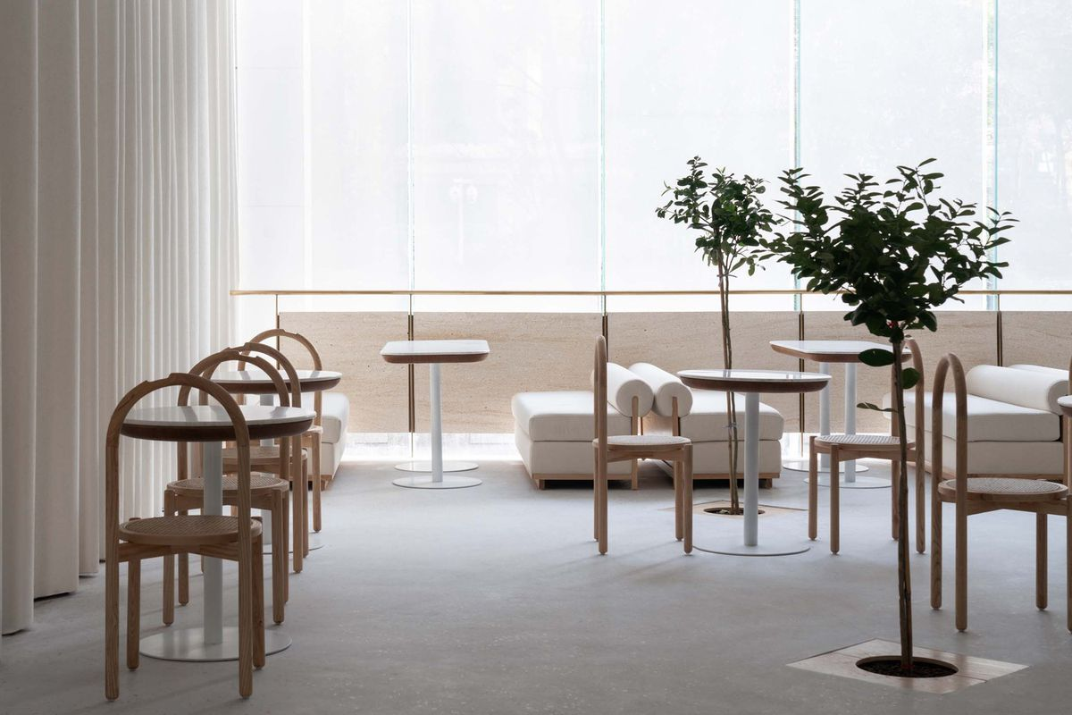 Minimalist tables in chairs in all-white space with a few trees as decor.