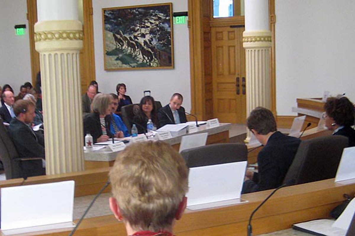 Members of the testing task force presented to legislators Wednesday in the Capitol's new - but somewhat pillar-obstructed - hearing room.