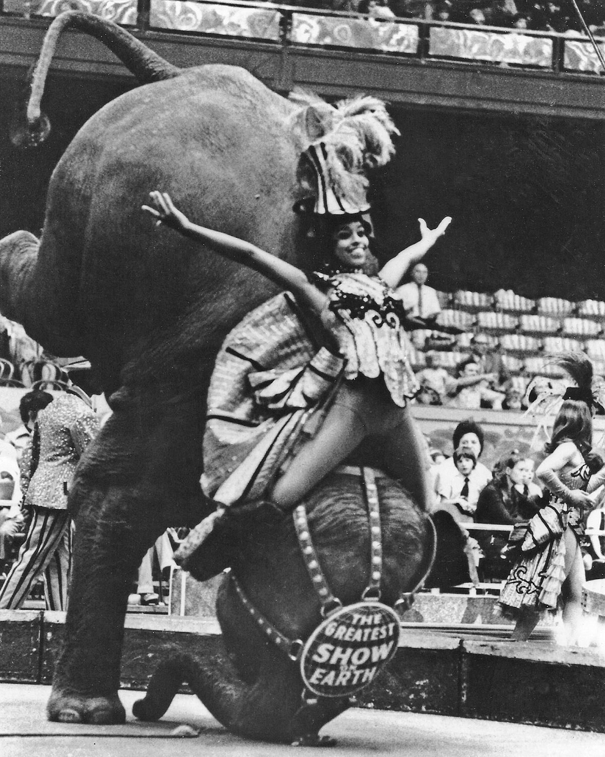 """Alice Clark Brown said riding on the elephants was """"kind of scary for me because I was afraid of heights."""""""