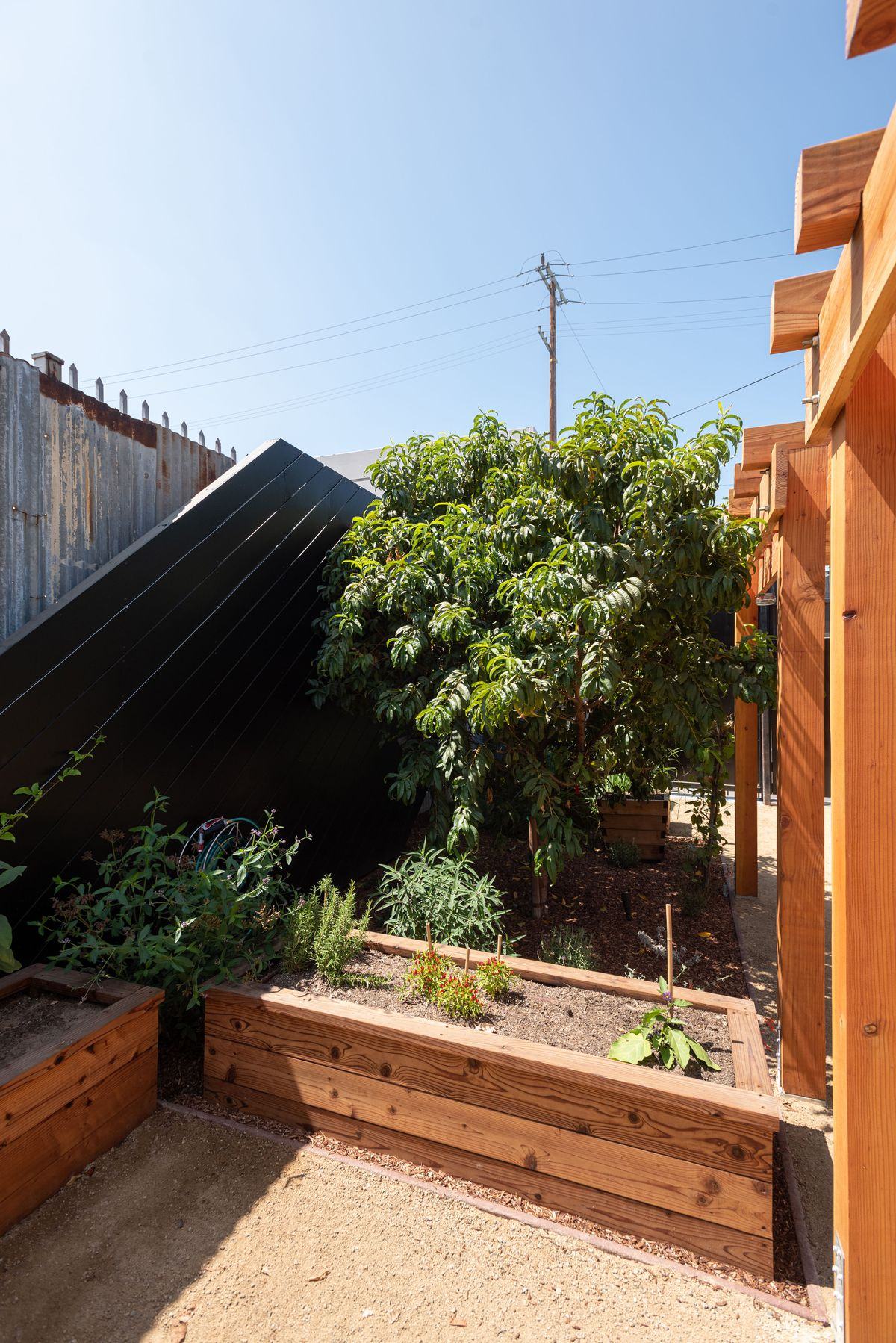 A tilted view of a garden with boxes and lots of greenery.