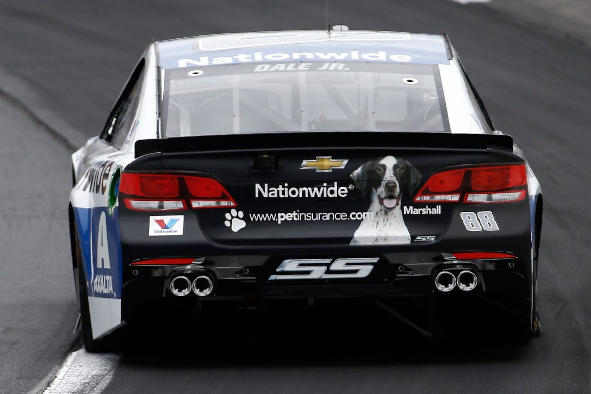 Dale Earnhardt Jr S Nationwide Car Features A Very Good Dog