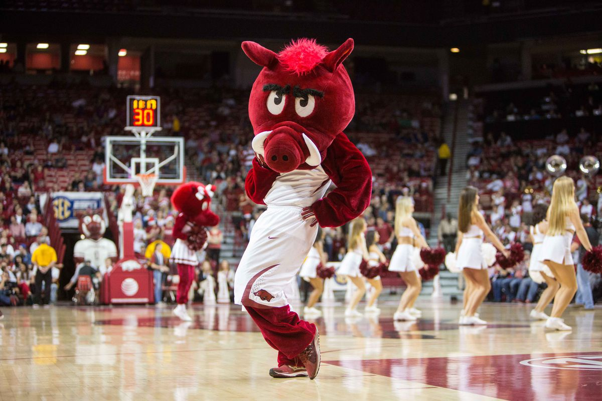 NCAA Basketball: Tennessee Tech at Arkansas