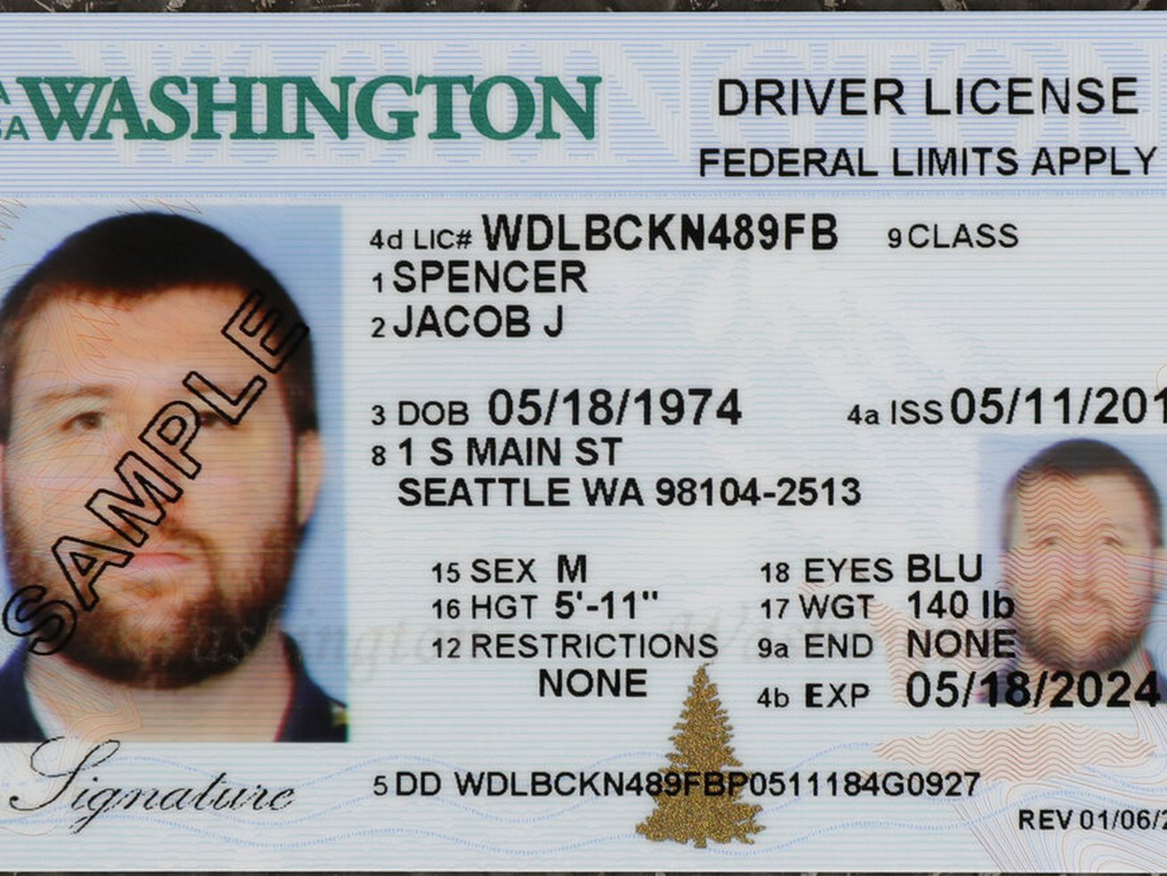 Sample copy of a Washington drivers license is shown at the Washington state Dept. of Licensing office in Lacey, Wash.