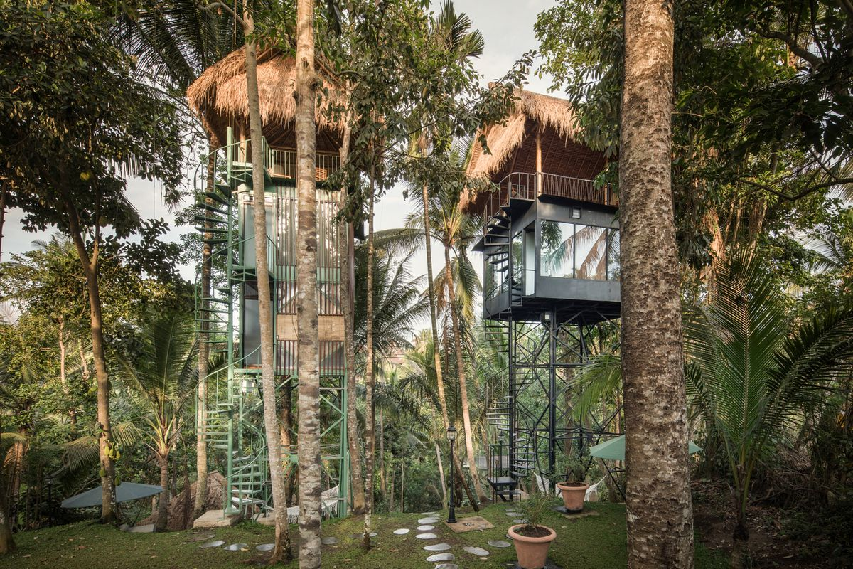 Thatched roof treehouses in a tropical forest.