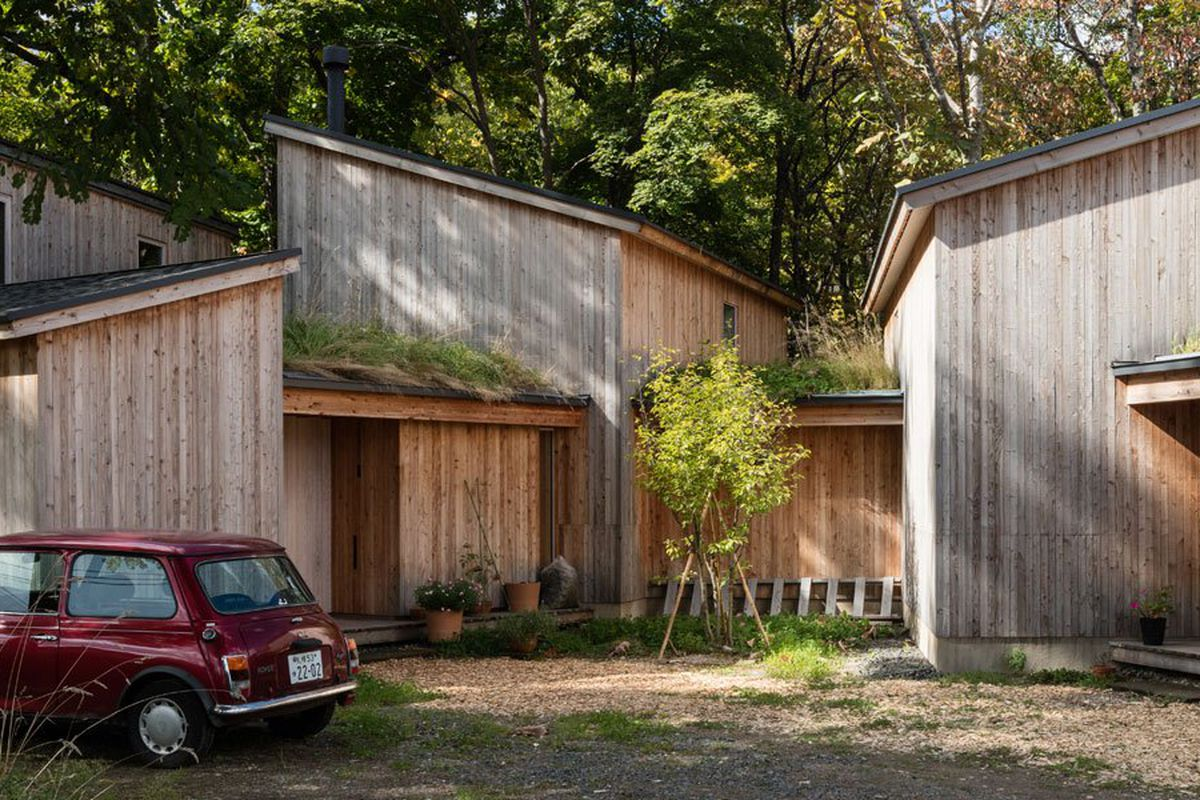 Sloping timber volumes make up home set in woodland site.