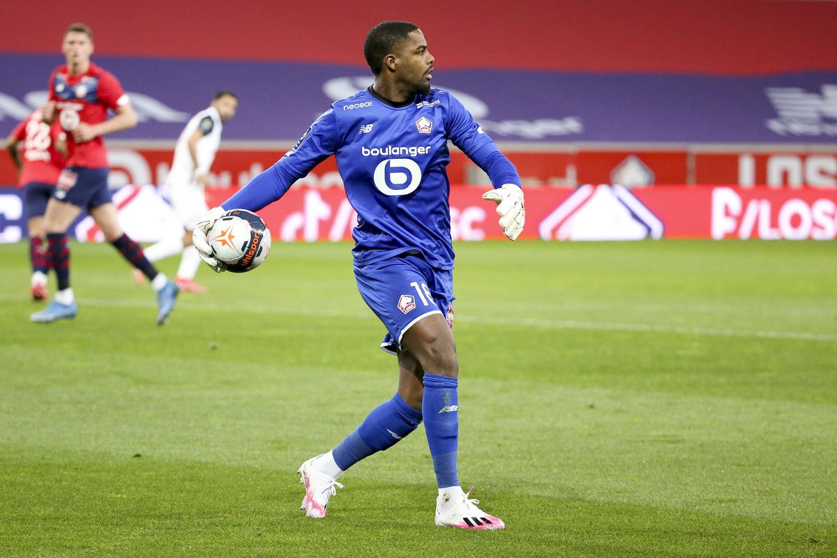 Lille OSC v Montpellier HSC - Ligue 1