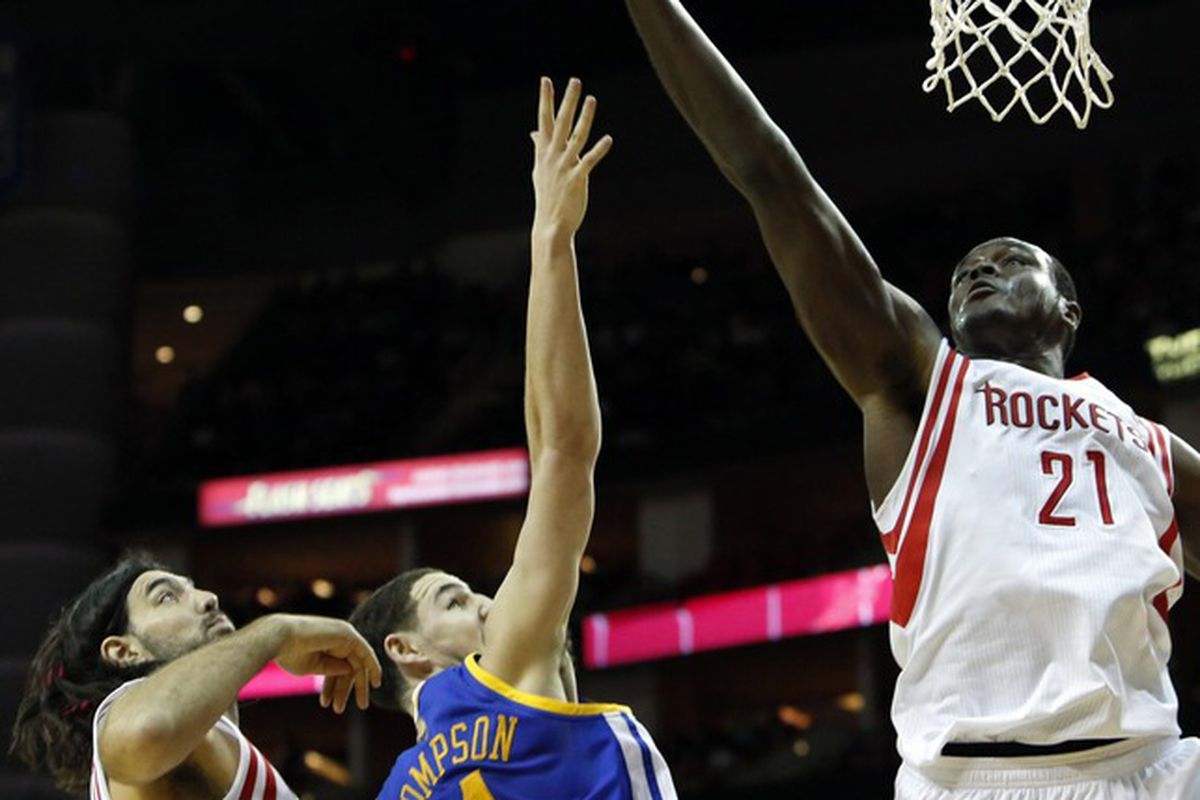 Dalembert may not be a long-term replacement for Andrew Bogut, but he's a big addition for an undersized Bucks team.