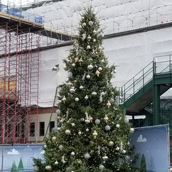Cubs holiday tree