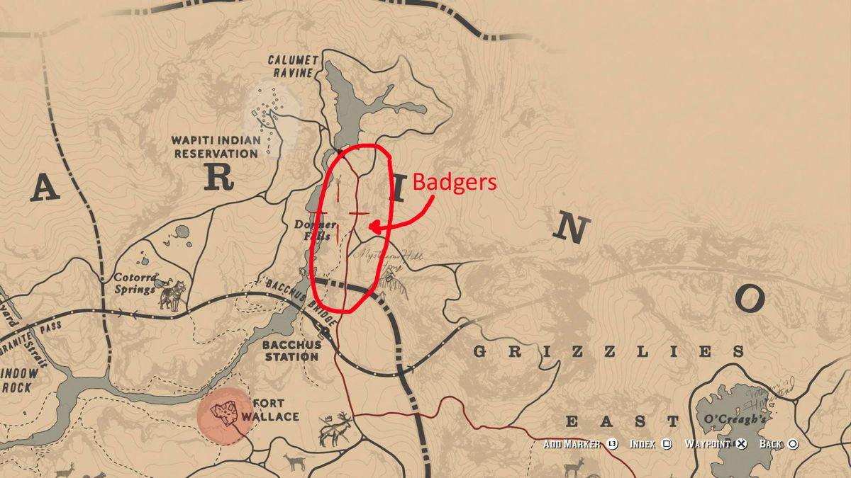 Red Dead Redemption 2 - in-game map showing where to find badgers