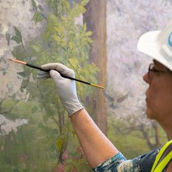 Mural artist Linda Curly Christensen adds foliage onto the newly installed instruction room mural in the Mesa Arizona Temple in July 2020. The touch-up process hides the seams of the 15-foot sections of canvas to produce a seamless finish.