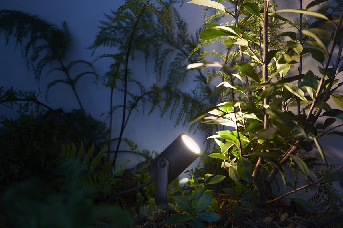Spotlight shining light in a garden