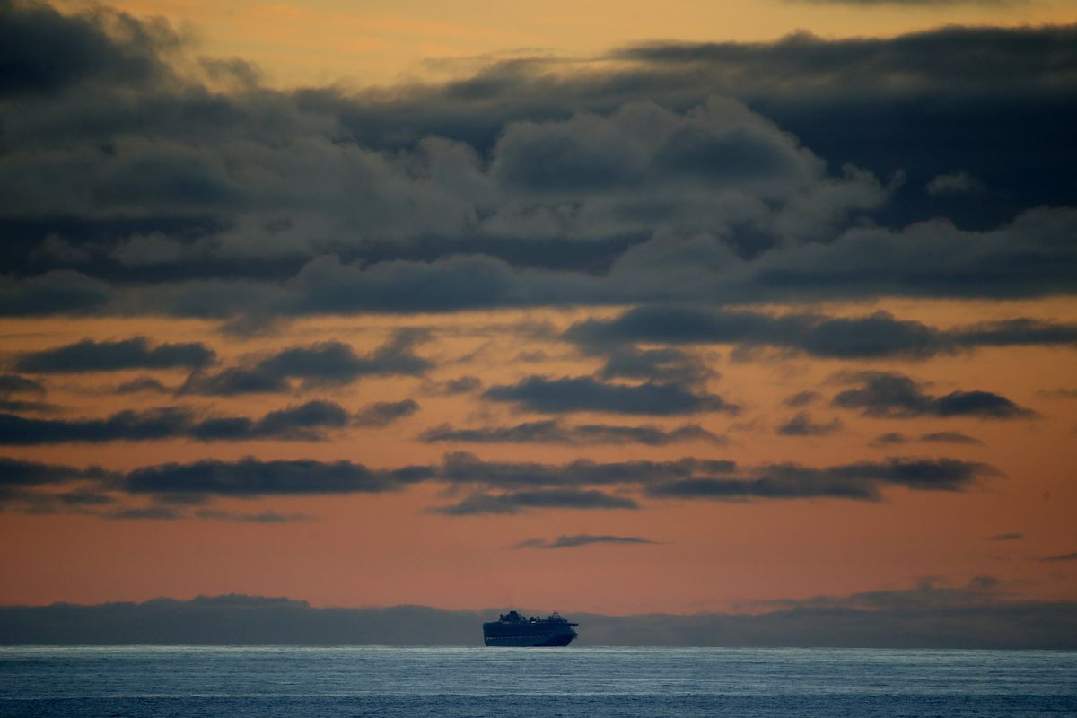 Cruise Ship Stranded Off San Francisco After 21 Test Positive For Coronavirus