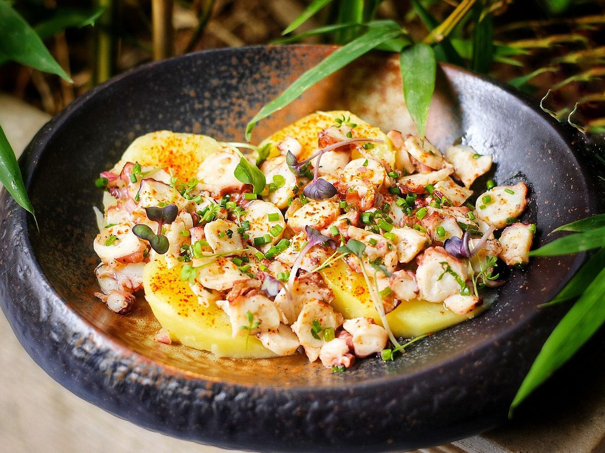 A dark, thick, shallow bowl filled with a bright mixture of octopus slices, herbs, and sauce, sits among plant leaves draped over the edges