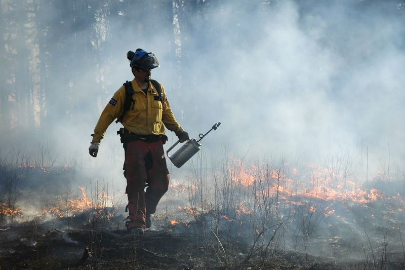 A person walks through smoke and fire beside a forest.