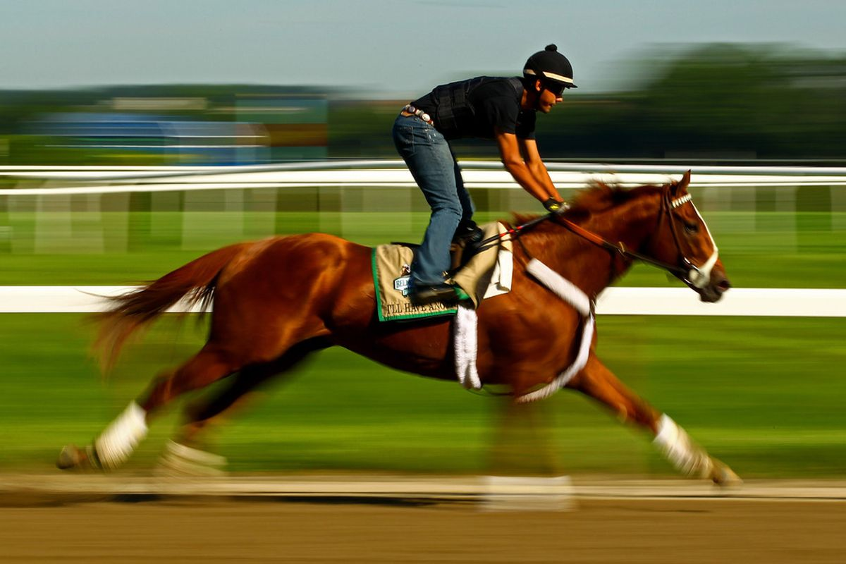 ELMONT, NY - JUNE 07:  Triple Crown Hopefull I'll Have Another gallops with exercise rider Jonny Garcia up during a morning workout at Belmont Park on June 7, 2012 in Elmont, New York.  (Photo by Al Bello/Getty Images)