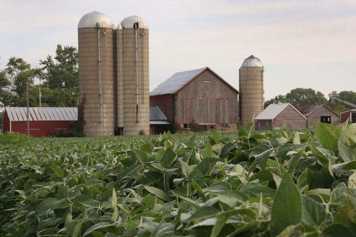 Farm Report Bengie Gonzalez And Zack Granite Lead Red