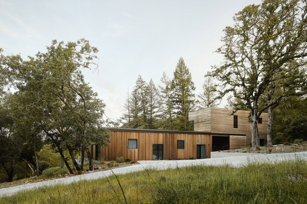 Modern home in California masterfully retreats into nature - Curbed