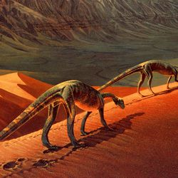 A sketch of what life may have been like for Seitaad ruessi, one of the dinosaurs discovered in Utah in 2010.