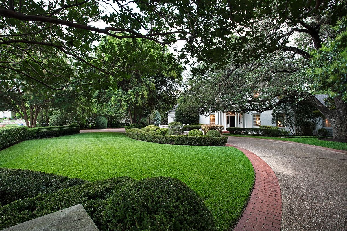 Large manicured lawn with circular driveway and big trees leading to big, ivy-covered, white brick house