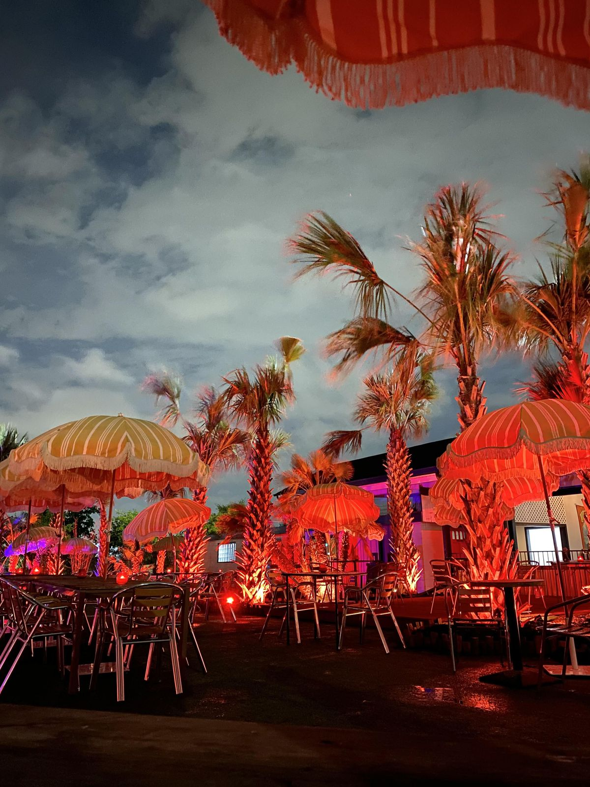 a patio with palm trees and fringed umbrellas