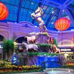 Chinese New Year is celebrated all over Las Vegas this weekend. The centerpiece? The Year of the Horse display at the Bellagio Conservatory & Botanical Gardens. [Photo: Bellagio]
