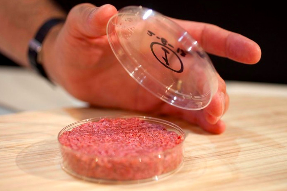 Image result for lab grown burger