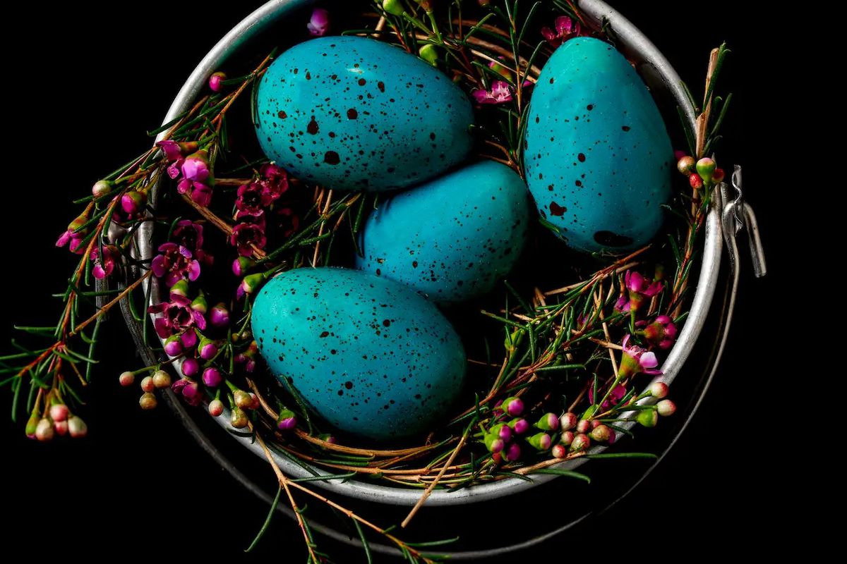 A close up of a nest laced with magenta heather. In the center are bright Robin's egg blue, speckled candy eggs