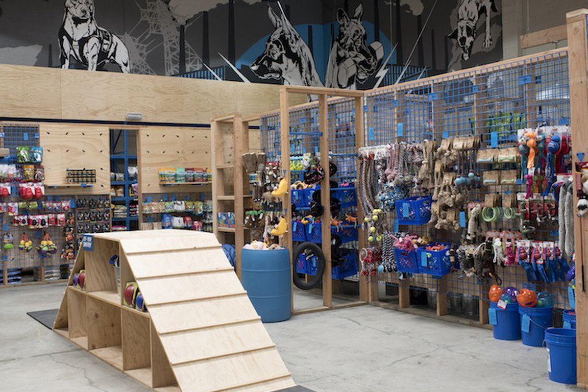 Blue Collar Dog Echo Park